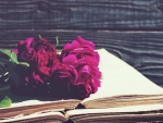 Book and Peony