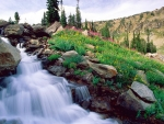 Waterfall at Grand Tetons NP