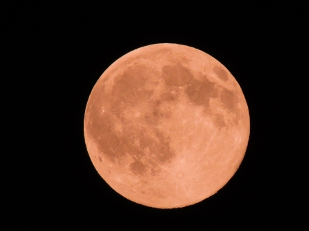 Super Moon - Super Moon, Space, Photography, Sky