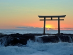 Torii at Sunset, Japan