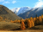 stunning fall season mountains
