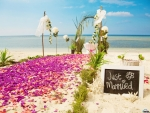 Decorating Beach for Weddings