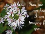 You Are On My Heart & I am Praying...(2)