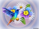 HUMMINGBIRD ON BLUE FLOWERS