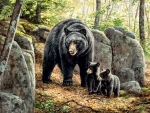 Mama Bear and Her Cubs F