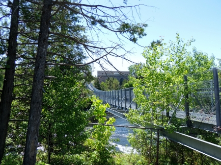 Side View Of A Suspension Bridge - Bridge, Trees, Side View, Architecture, Photography