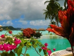 Blue Lagoon at Bora Bora