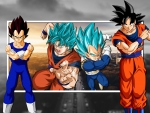 DBZ - Dragon Ball Z