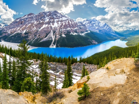 Peyto Lake in Alberta, Canada - snow, lake, clouds, trees, nature, mountain, canada