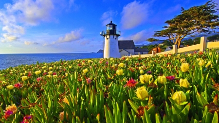 Scenic Lighthouse - lighthouse, beach, flowers, trees, sky, nature, sea