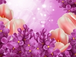 Spring Lilacs and Tulips