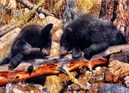 Black Bears F - painting, animal, bear, nature, illustration, art, wide screen, artwork, beautiful, wildlife