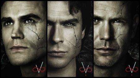 The Vampire Diaries (2009-) - actor, damon, stefan, alaric, the vampire diaries, face, collage, by cehenot, fantasy, Paul Wesley, man, black, vampire, brother, tv series, Ian Somerhalder, hunter
