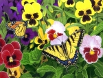 Butterfly & Pansies