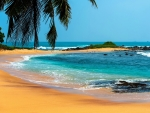 Tropical Sea Beach