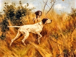 Two Pointers in a Landscape - Dogs