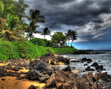 Cloudy Beach - stones, clouds, storm, coast, palm, beach, nature, trees