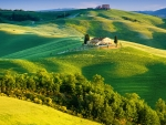 Italy-green fields, beautiful landscape