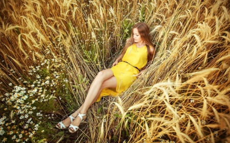 Model in a Wheat Field - model, dress, field, redhead