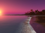Pink Sunset on the Beach