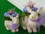 Easter Bunny Planters :D