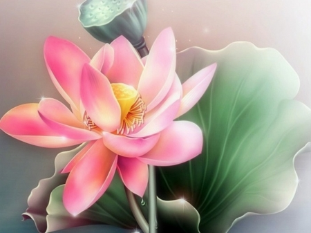 Summer Pink - water lilies, flowers, summer, lotus, love four seasons, nature, paintings