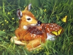 Fawn of Spring