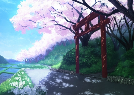 Torii Gate - shrine, japanese, cherry blossom, orginal, scenery, temple, anime, village, torii, sakura, japan