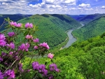 River in the Hills of West Virginia