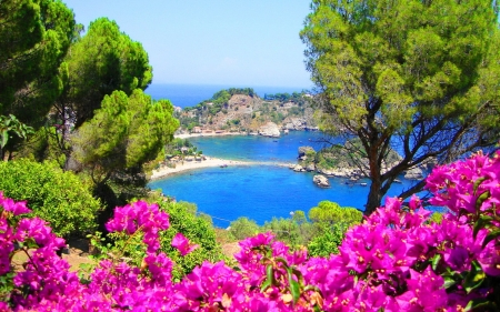 Coast of Sicily, Italy - Coast, Nature, Sea, Italy, Oceans, Flowers, Spring