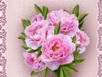 Pure PInk Peonies