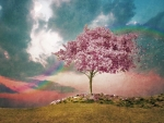 Pink tree and rainbow