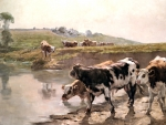Cattle in a Pasture F