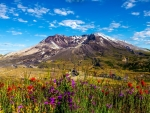 Mount St.Helens,Washington