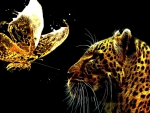 Leopard and Butterfly