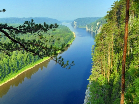 River Both side Forest - spruce, forest, river, sky, nature, trees