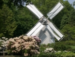 Windmill in Garden
