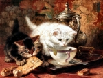 High Tea - Kittens