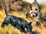 Two Scotch Terriers in a Landscape - Dogs
