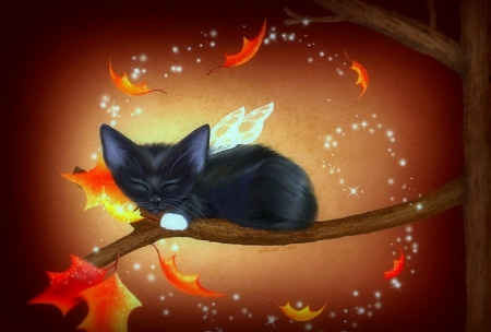 Kitten-fairy - halloween, kitten, fairy, black, leaf, tree, autumn, wings, orange, branch