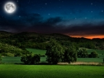 Moonlit night in the countryside