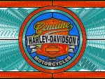Genuine Harley Davidson glass