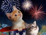 4th Of July Kittens