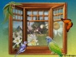 BIRDS IN WINDOW