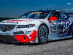 2015 Acura THX GT Race Car