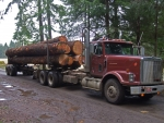 international harvest log truck
