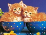 Kittens in an teacup