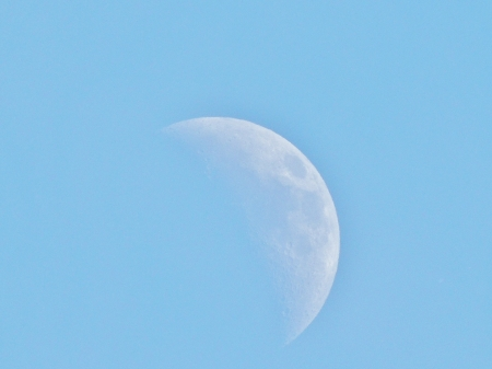 Daylight Moon - Moon, Space, Daylight, Sky, Photography