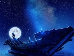 Bird on shipwreck in the moonlight
