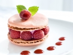 Macarons with raspberry ice cream